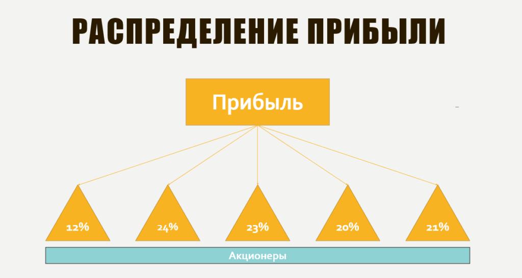 Распределение прибыли в ао